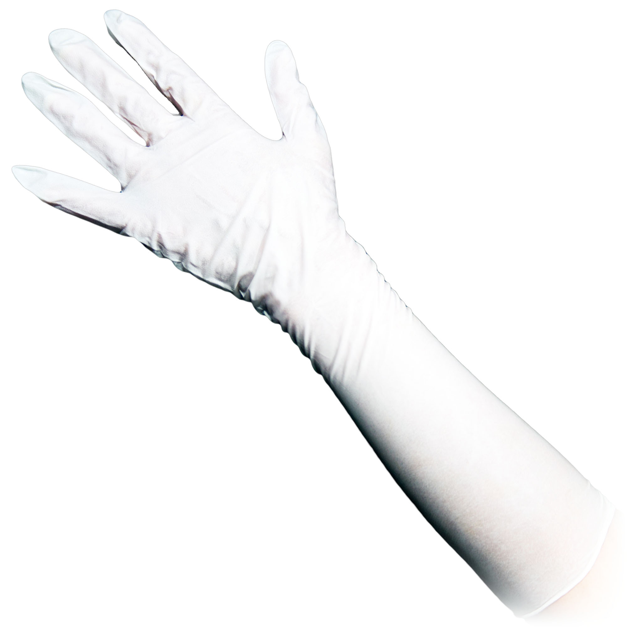 Protective Gloves Image