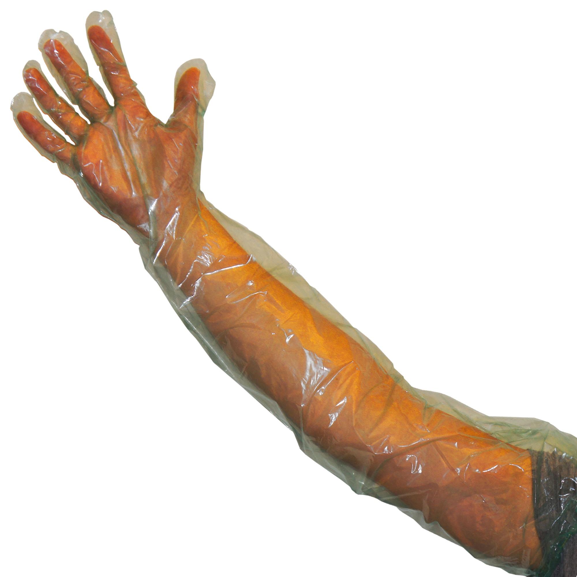 PE-Schutzhandschuhe für Reinigungsarbeiten Image